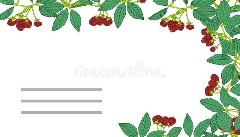 夏天模板用莓果 您的设计的模板,贺卡,欢乐公告 向量例证