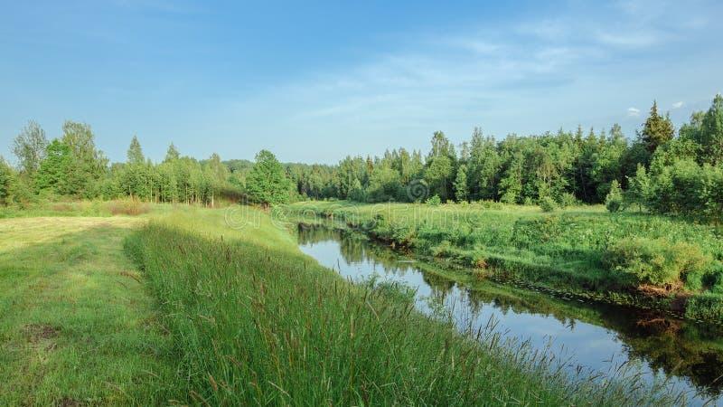 夏天横向 有多小山海岸的一条河流经草甸入森林 免版税库存照片