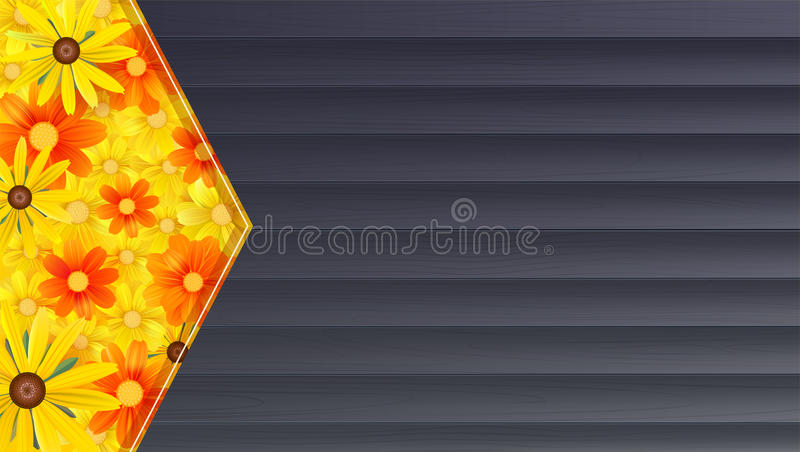 夏天横幅,背景 雏菊的黑木背景和领域,黄色花 模板,大模型网上购物 库存例证