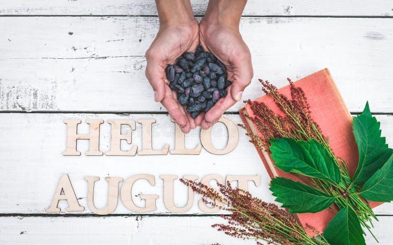 夏天横幅:词你好8月,旧书和男性手拿着在白色木土气背景的蓝色莓果 水平的舱内甲板 图库摄影