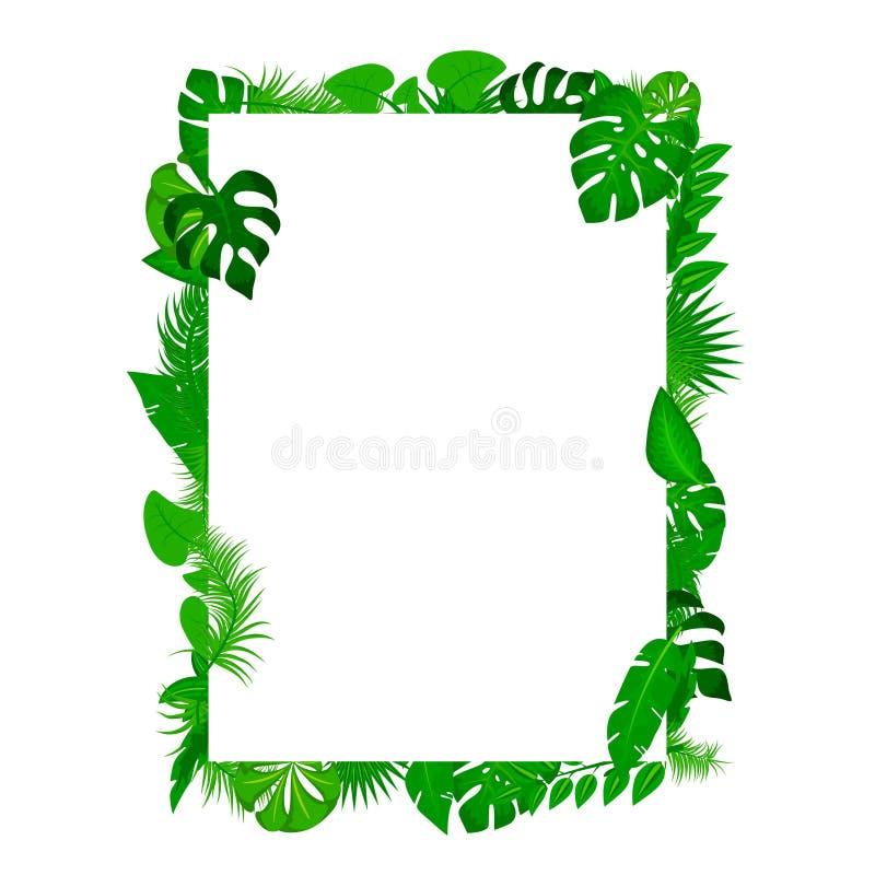夏天海报 与白皮书的热带叶子背景与文本空间框架横幅 热带背景传染媒介棕榈 库存例证