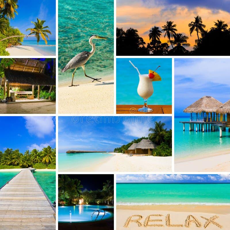 夏天海滩马尔代夫图象拼贴画  免版税库存照片