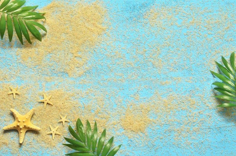 夏天海背景 海星和棕榈在木蓝色背景分支 向量例证