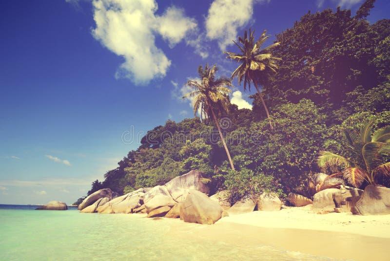 夏天海滩天堂风景异国情调概念 免版税图库摄影