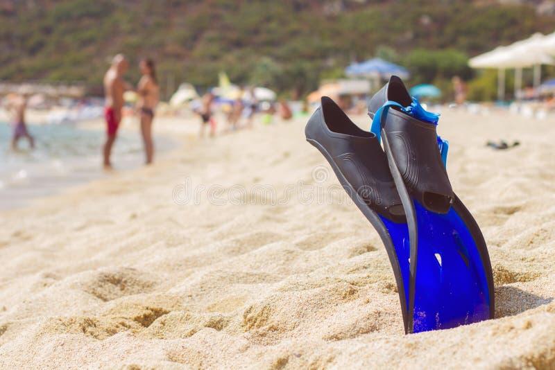 夏天海滩游泳辅助部件 库存图片