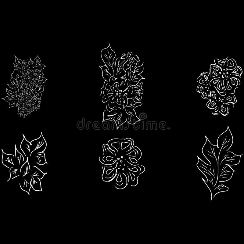 夏天热带套叶子 花卉植物的花收藏 手拉的传染媒介集合 等高剪影 热带叶子棕榈象 库存例证