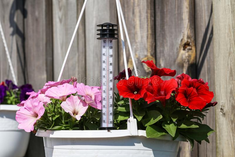 夏天热- termometer显示高温 图库摄影