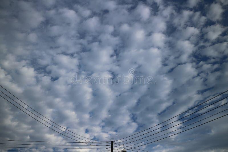 夏天稀薄的云彩广角透视 库存照片
