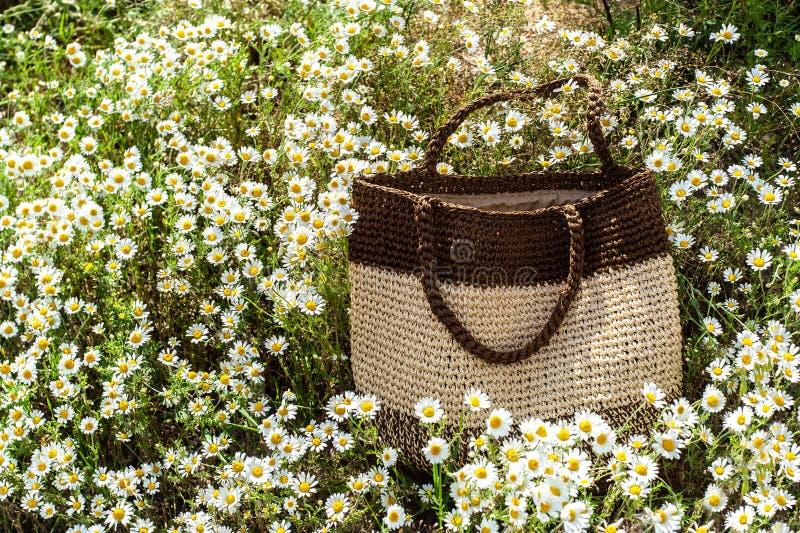 夏天米黄棕色被编织的袋子在春黄菊领域的美丽的被聚焦的春黄菊花内放置,与占位符 免版税库存照片