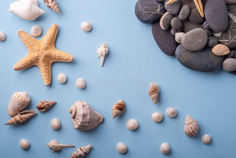 夏天纹理海星贝壳小卵石顶视图蓝色背景 库存图片