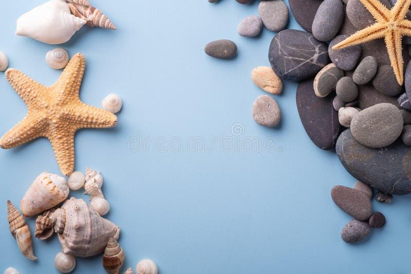 夏天纹理海星贝壳小卵石顶视图蓝色背景 库存照片