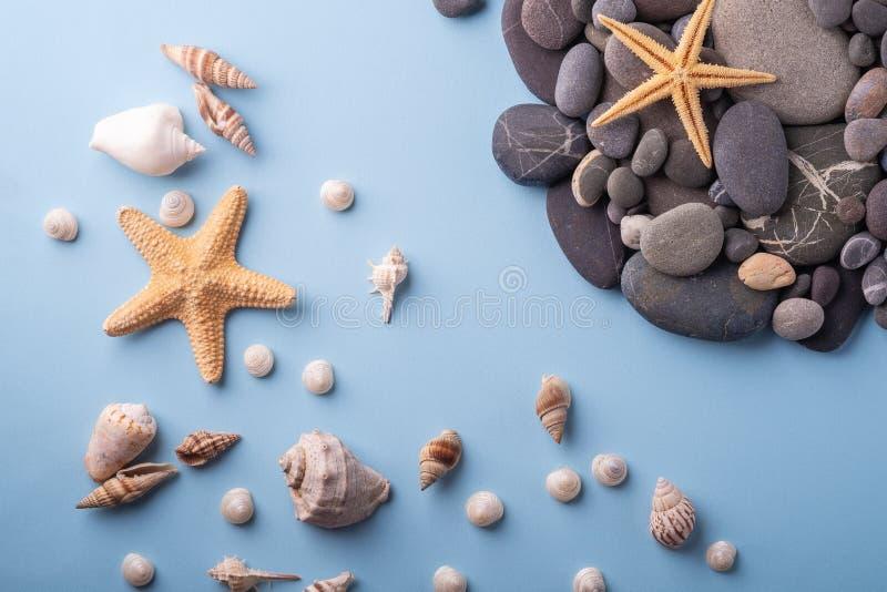 夏天纹理海星贝壳小卵石顶视图蓝色背景 图库摄影