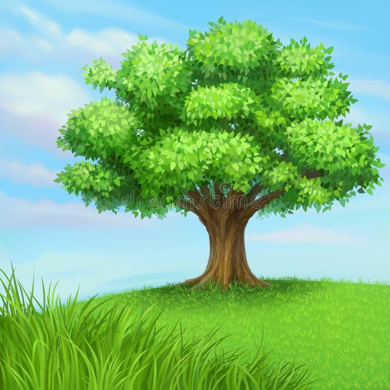 夏天结构树向量 皇族释放例证