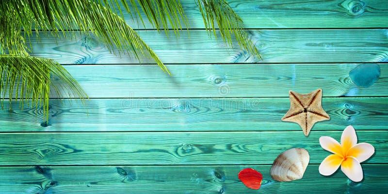 夏天背景、棕榈树和海壳 图库摄影