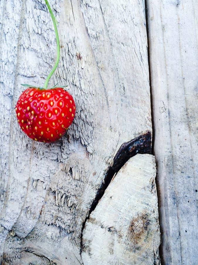 夏天草莓  库存照片