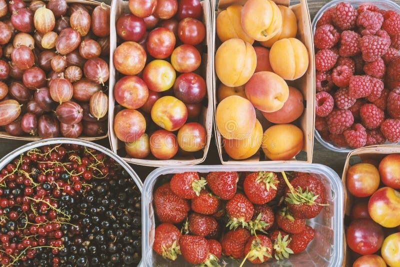 夏天莓果和果子背景 库存照片
