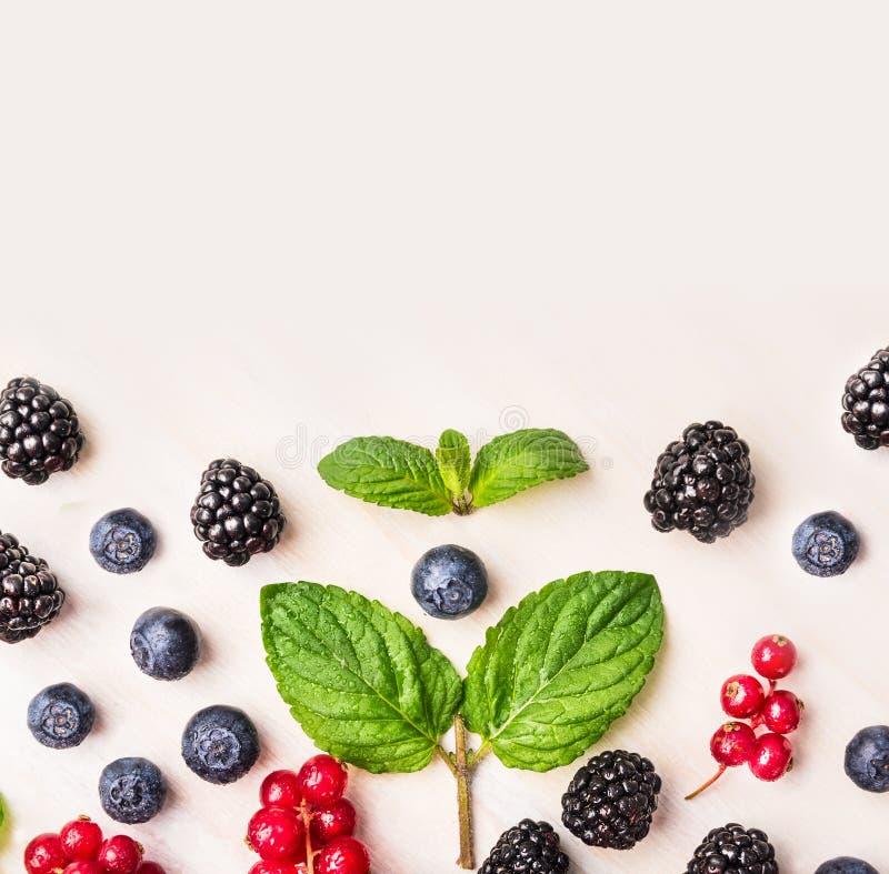 夏天莓果框架用新鲜薄荷在白色木背景离开 免版税图库摄影