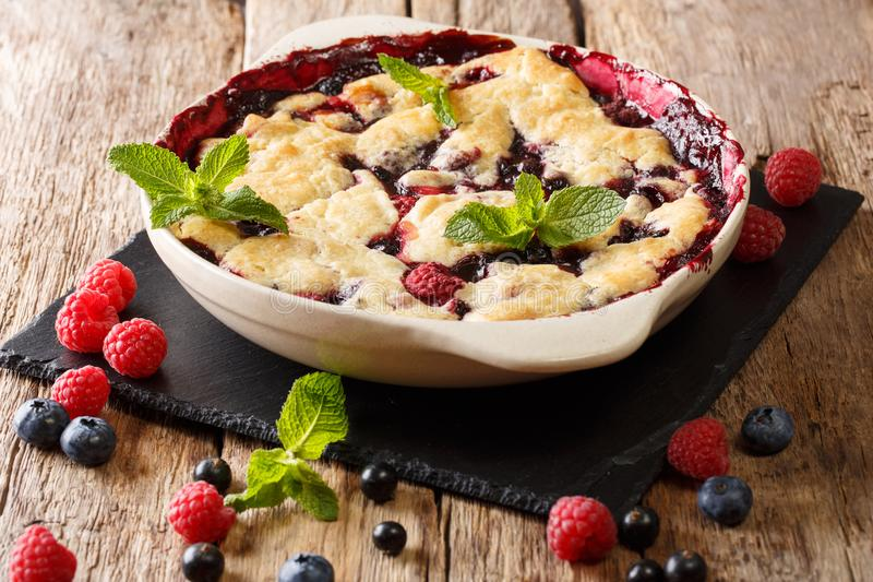 夏天莓果蛋糕用莓莓果、无核小葡萄干和blueberri 库存图片