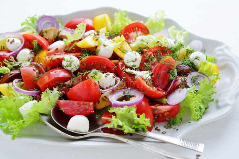 Download 夏天蕃茄沙拉用乳酪 库存图片. 图片 包括有 绿色, 食物, 莳萝, 蔬菜, 黄色, 原始, 红色, 男低音 - 62539007