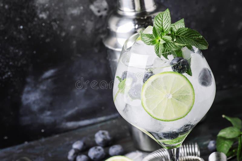 夏天酒精鸡尾酒蓝莓mojito用兰姆酒,薄菏,石灰 库存照片