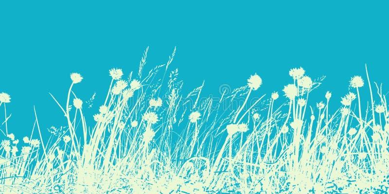 夏天野花的领域、例证,草本和草 T 图库摄影