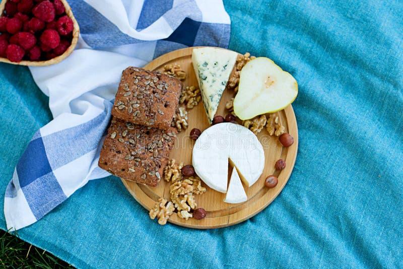 夏天野餐在格子花呢披肩的乳酪褶 图库摄影