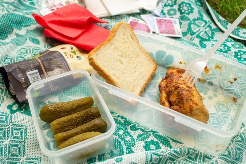 夏天野餐:面包、被烘烤的鸡、酱瓜和番茄酱在绿色和白色床罩 免版税库存照片