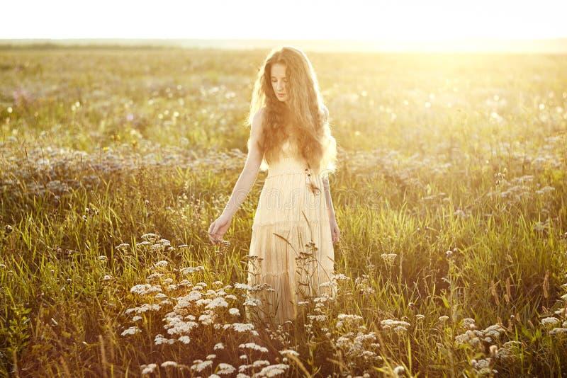 夏天领域的年轻美丽的女孩 秀丽夏令时 免版税图库摄影