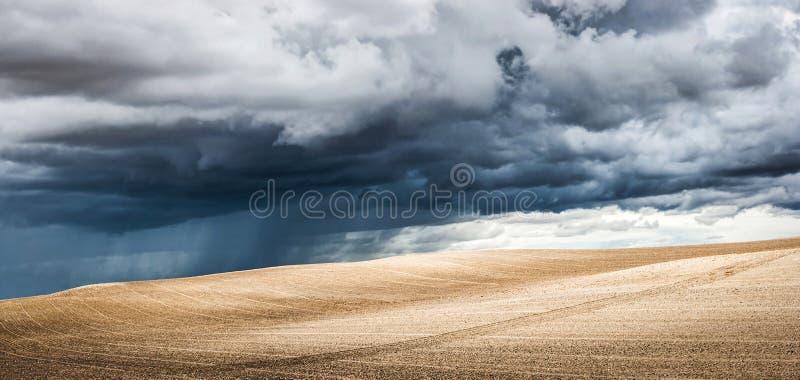 夏天风景全景与剧烈的雷云的在背景中 免版税库存图片