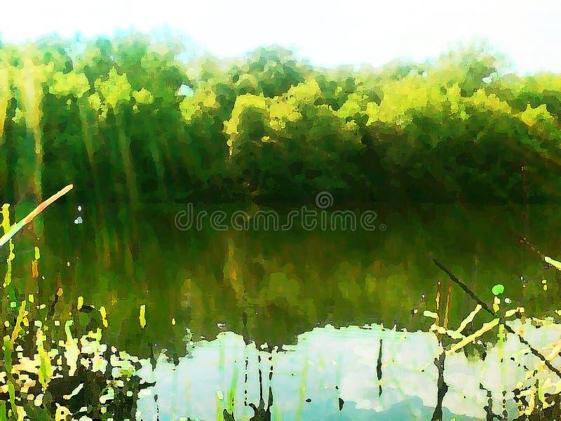 夏天风景描述有绿色树和太阳光芒的一个河岸 水彩 向量例证