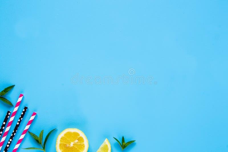 夏天鸡尾酒的成份 库存照片