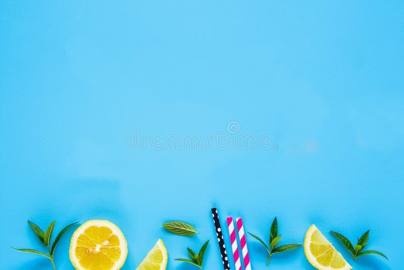 夏天鸡尾酒的成份 免版税图库摄影