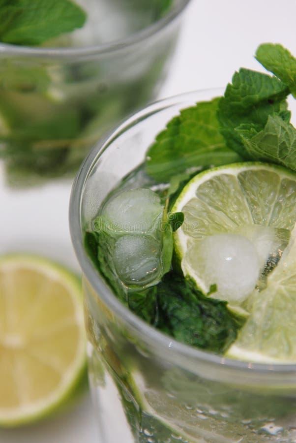 夏天鸡尾酒Mohito薄菏和石灰刷新的饮料Mojito用兰姆酒和冰在被隔绝的玻璃 免版税库存照片