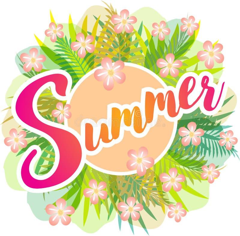 夏天-与绿色叶子、蕨和桃红色花的传染媒介图画 向量例证