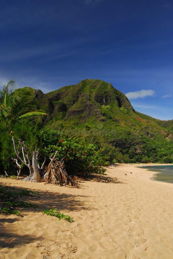 夏威夷全景 库存照片