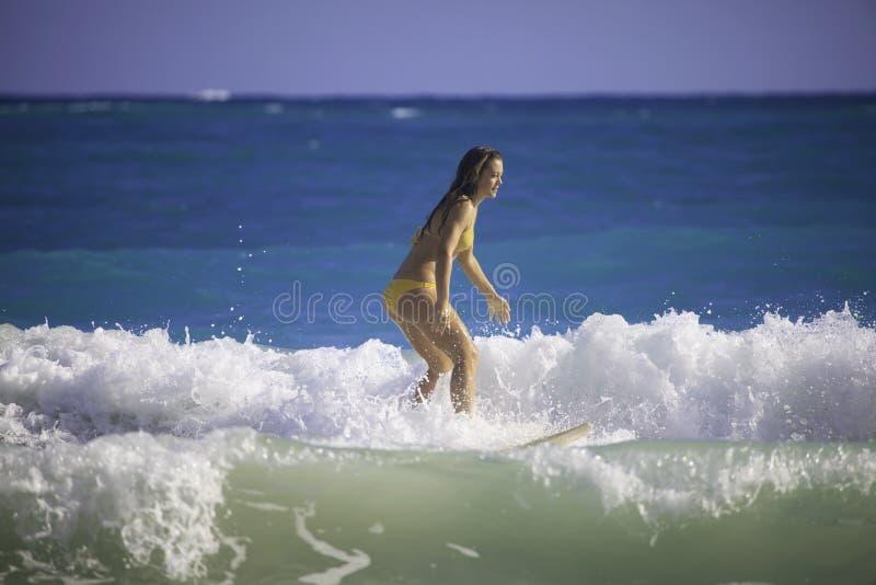 夏威夷冲浪的妇女年轻人 库存照片