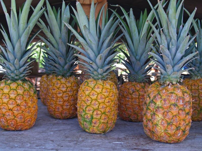 夏威夷市场菠萝路旁 库存照片
