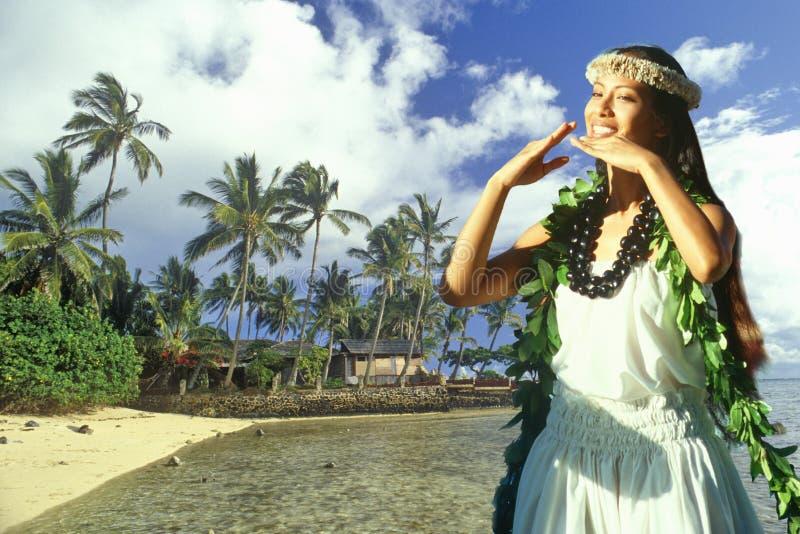 夏威夷当地舞蹈家和海岸线与棕榈树和小屋的综合图象在夏威夷 免版税图库摄影