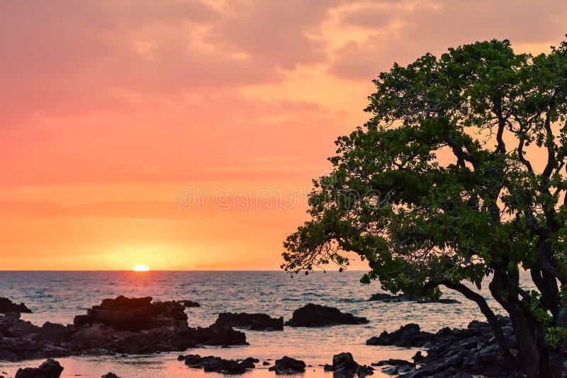 夏威夷日落焕发 库存图片