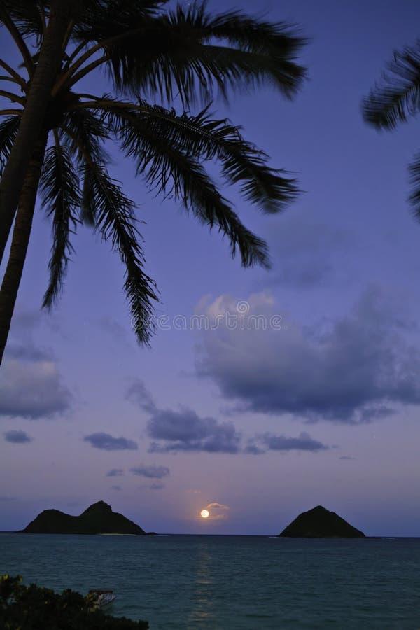 夏威夷月出太平洋 免版税图库摄影