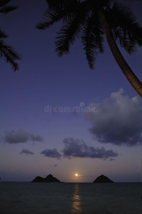 夏威夷月出太平洋 免版税库存照片