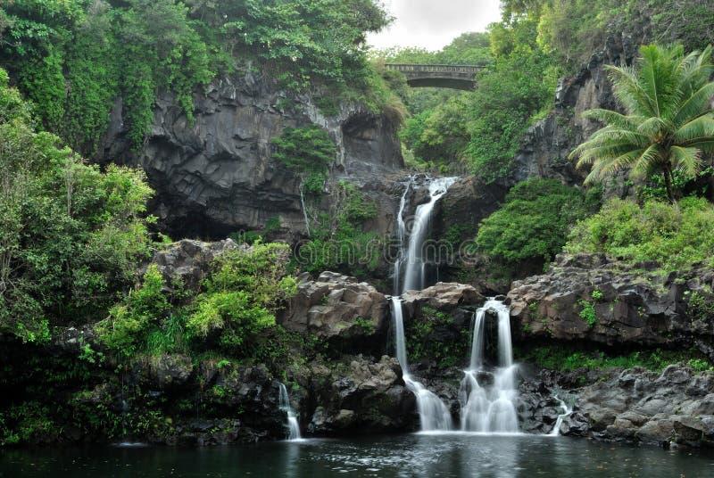 夏威夷毛伊俄亥俄池神圣七 库存照片