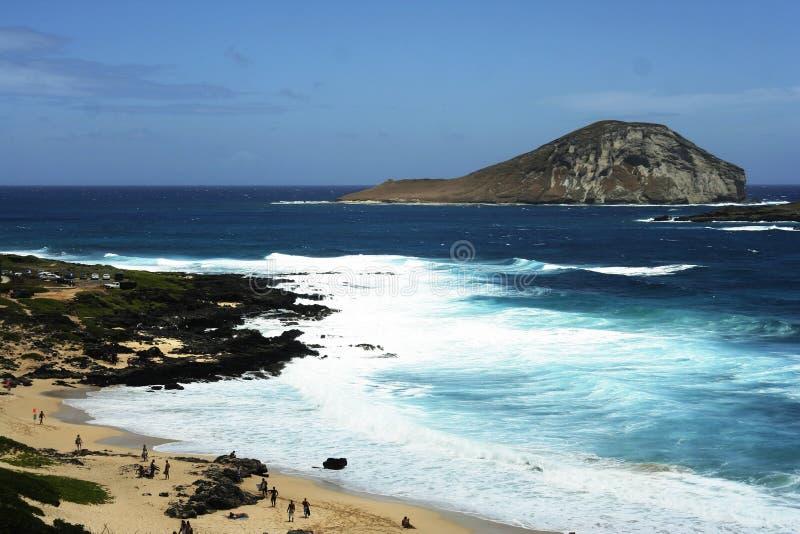 夏威夷海滨 免版税库存图片