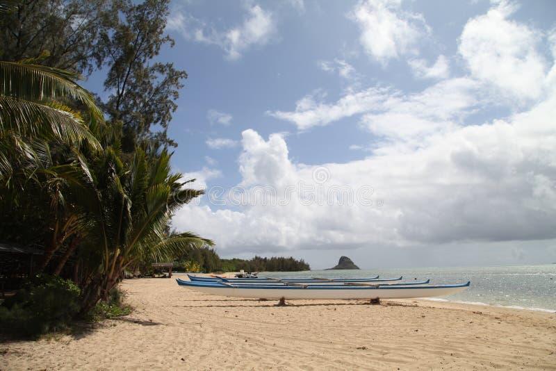 夏威夷海滩 免版税库存图片