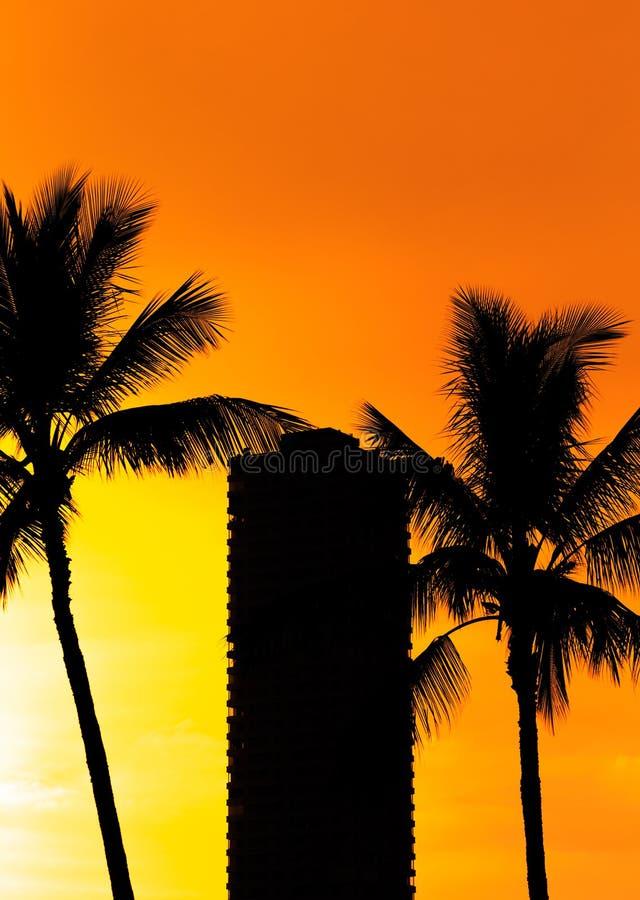 夏威夷海滩日落剪影 免版税库存图片