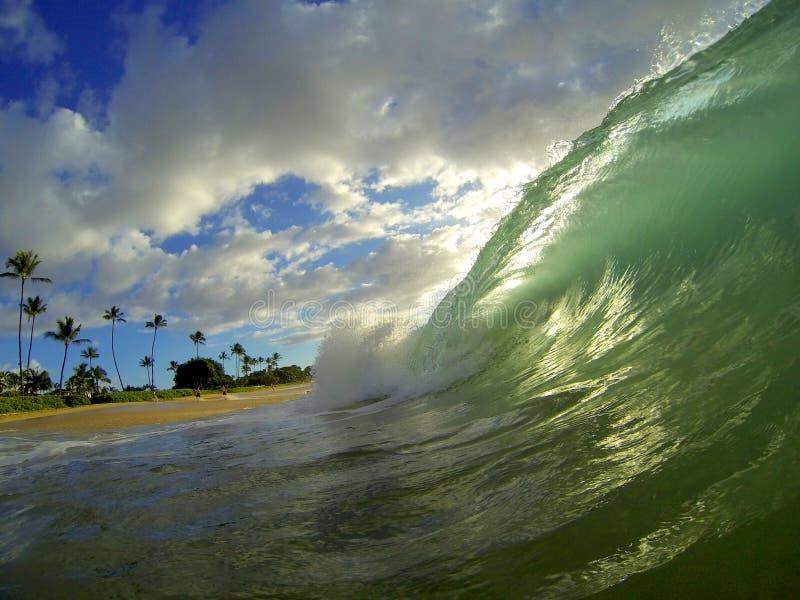 夏威夷海滩波浪 免版税库存照片