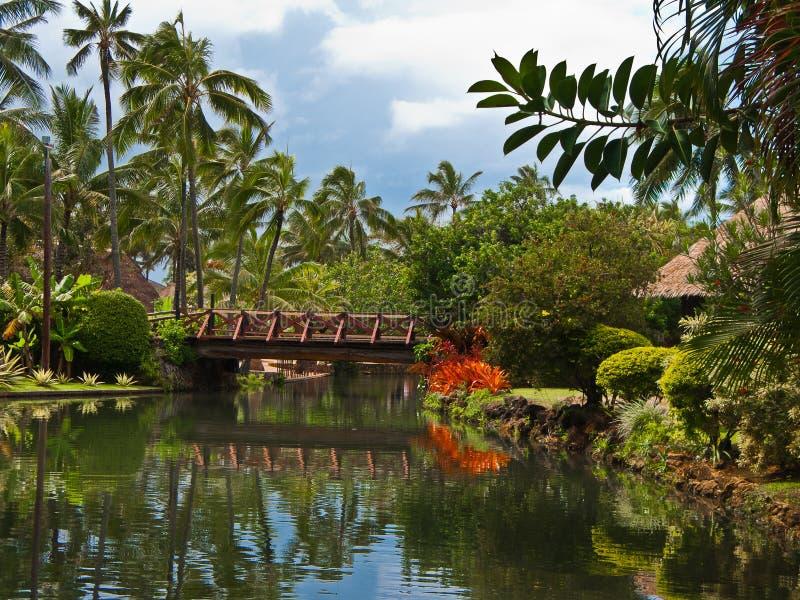 夏威夷玻利尼西亚人村庄 免版税库存图片