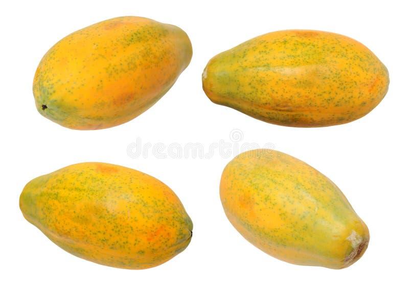 夏威夷番木瓜 库存照片
