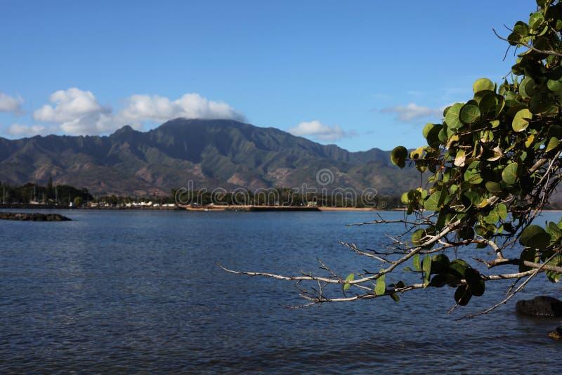 夏威夷自然 免版税库存图片