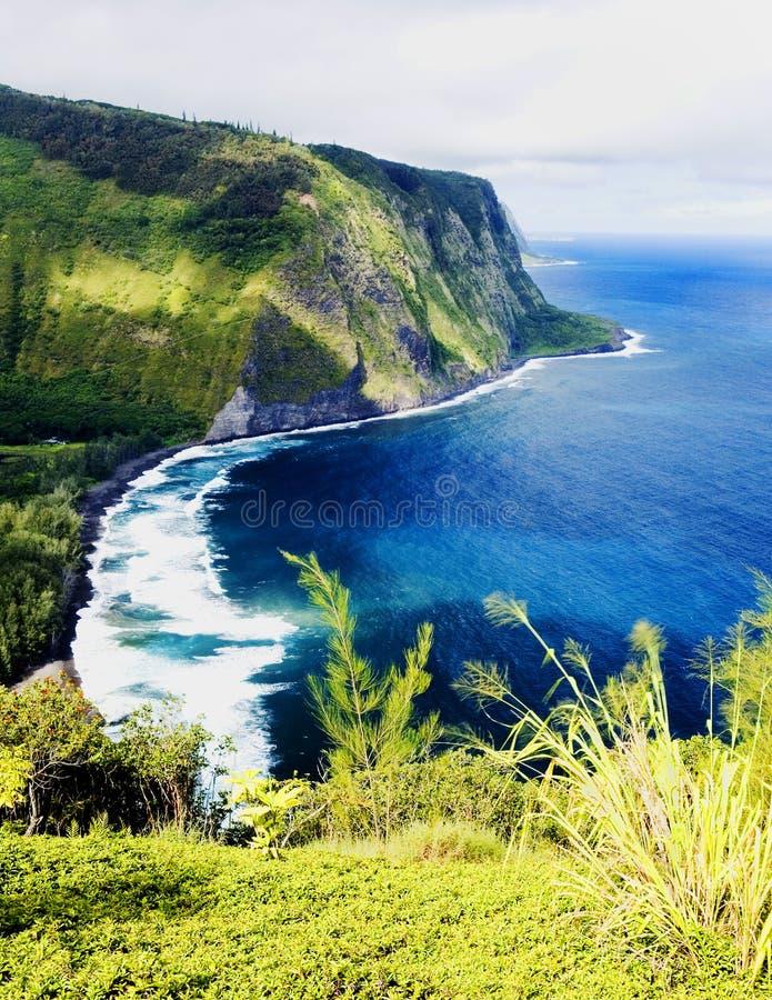 夏威夷谷waipio 免版税库存照片